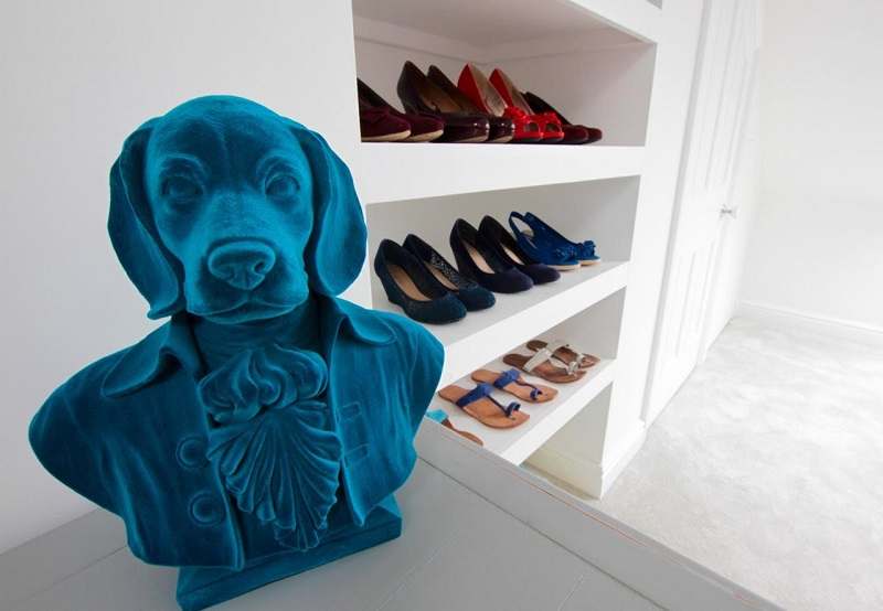 Dog bust in Swindon Stylist studio
